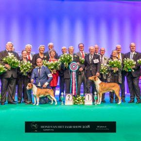Hond van het jaar show 2018 (13-01-2019)